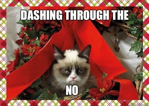 Angry+cat_e3891e_4248441